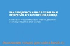 Обучение созданию прибыльных информационных сайтов 4 - kwork.ru