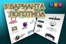 Стильный логотип 3 варианта + исходники 29 - kwork.ru