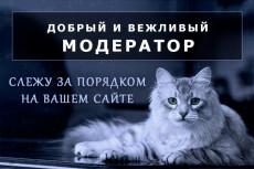 Наполнение сайта контентом 3 - kwork.ru