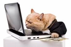 Исправление ошибок на WordPress, Bitrix, OpenCart 19 - kwork.ru