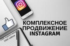 3000 подписчиков в Инстаграм + 30000 лайков 24 - kwork.ru