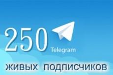 Переведу с английского на русский язык Premium Wordpress тему 23 - kwork.ru