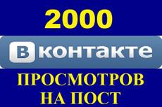 Продвину 2000 просмотров к вашей записи Вконтакте 21 - kwork.ru