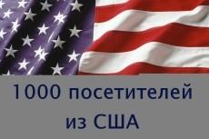 30 000 трафика из США 3 - kwork.ru