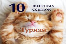 Размещу 300 вечных трастовых ссылок 35 - kwork.ru