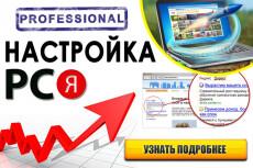 Настрою Яндекс Директ + Метрика + РСЯ 15 - kwork.ru
