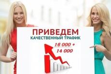 500  уникальных посетителей в сутки 9 - kwork.ru