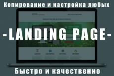 установлю Wordpress и полностью все настрою 7 - kwork.ru