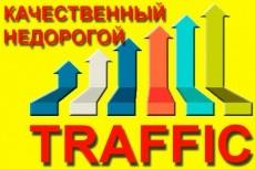 Улучшение поведенческих факторов при помощи ифрейм трафика 14 - kwork.ru
