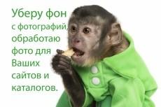 Выполню обтравку товара или удаление фона до 40 фотографий 39 - kwork.ru
