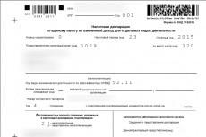 Декларация ЕНВД 8 - kwork.ru