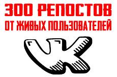 Продвижение группы или личной страницы Вконтакте 1000+ подписчиков 16 - kwork.ru