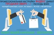 Профессиональная настройка РСЯ 10 - kwork.ru