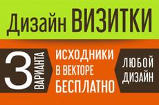 Стильный дизайн визитки 2 Варианта 22 - kwork.ru