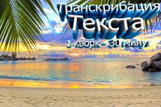 Быстрое и качественное транскрибирование аудио или видео 25 - kwork.ru