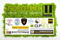Создам Логотип 2 Варианта 47 - kwork.ru
