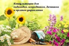 календарь бухгалтера СНТ 6 - kwork.ru