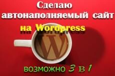 Подключу автонаполнение к вашему сайту на Wordpress 6 - kwork.ru