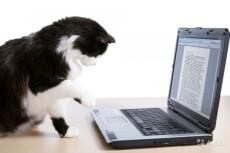 Выполняю рерайт текстов, статей, отрывков объемных научных работ 3 - kwork.ru