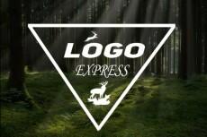 Дизайн вашего логотипа 40 - kwork.ru