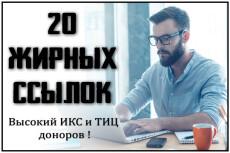 Жирная Ссылка с сайта ТИЦ 40к + 4 трастовые ссылки. Общий ТИЦ более 50к 7 - kwork.ru