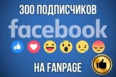 Добавлю 3000 подписчиков на паблик FanPage в Facebook 22 - kwork.ru