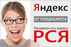 Оптимизация Яндекс Директ 3 - kwork.ru
