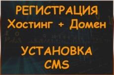 Зарегистрирую домен и хостинг, установлю CMS, счетчики 6 - kwork.ru