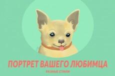Нарисую кота или кошку по фото 21 - kwork.ru