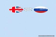 Premium перевод с польского и на польский язык 56 - kwork.ru