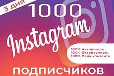 3000 Качественных Подписчиков Instagram плюс Лайки 22 - kwork.ru