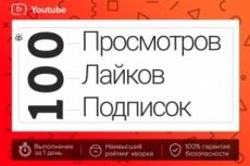 2000 реальных Youtube просмотров с гарантией 23 - kwork.ru