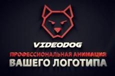создам интро видео для вас 11 - kwork.ru