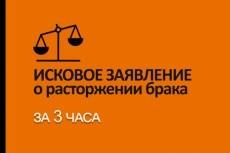 Составлю исковое заявление о разделе имущества супругов 5 - kwork.ru
