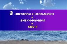 Качественно, Быстро. 3 варианта логотипа, визуализация и бонус 16 - kwork.ru