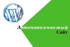 Сайт на Wordpress + Готовая связка для Арбитража 18 - kwork.ru