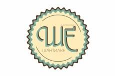 Логотип в стиле уникальной ручной надписи 27 - kwork.ru
