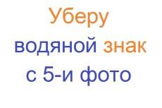 Перенесу сайт WordPress на другой домен, хостинг 39 - kwork.ru