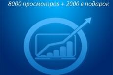 8000 тысяч просмотров для вашего сайта + 2000 тысячи в подарок 17 - kwork.ru