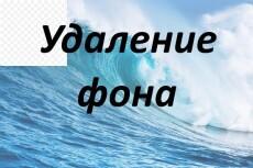Обрежу картинку изображение по контуру, удалю или поменяю фон 10 - kwork.ru