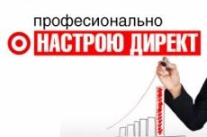 Настрою Яндекс.Директ для вашего проекта 16 - kwork.ru