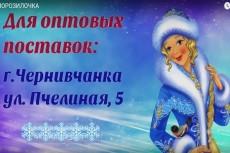 Комбинированный ролик (дудл и инфографика) 15 - kwork.ru