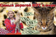 Сделаю 1 видео-визуализацию вашего логотипа или текста 41 - kwork.ru