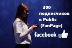 200 подписчиков с фильтрами в паблик Facebook. Не группа. Гарантия 12 - kwork.ru