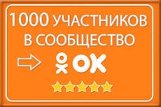 1000 +100 живых участников в группу Одноклассники 8 - kwork.ru
