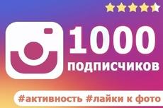 3000 Качественных Подписчиков Instagram плюс Лайки 5 - kwork.ru