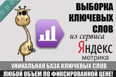 Делаю 5 групповых отчётов в Keys. so 20 - kwork.ru