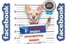 Подписчики ВК 4 - kwork.ru