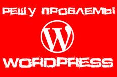 Настрою автопостинг вашего сайта WordPress в социальные сети 38 - kwork.ru