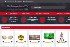 Магазин под ключ 5 - kwork.ru